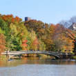 Stock Photo: New York City Central Park Rainbow Bridge