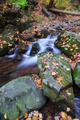 Arroyo de montaña otoño — Foto de Stock