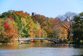 New York City Central Park Rainbow Bridge — Stock Photo