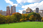Gratte-ciel de central park de manhattan New york city — Photo