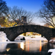 New York City Central Park bridge in winter — Stock Photo