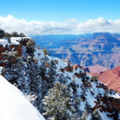 Grand Canyon panorama view in winter with snow — 图库照片