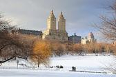 New York City Manhattan Central Park in winter — Stockfoto