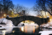 New York City Central Park bridge in winter — Stock Photo