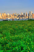 New York City Manhattan with lawn — Stock Photo
