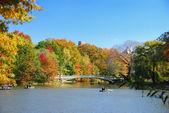 New York City Central Park with Rainbow Bridge — Stock Photo