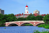 Harvard campus over Charles River — Stock Photo