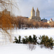 Stock Photo: New York City Manhattan Central Park in winter