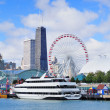 Chicago Navy Pier — Stock Photo #7916740