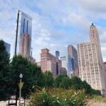 centrum miasta Chicago — Zdjęcie stockowe #7917877