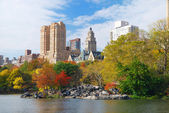 New York City Central Park — Stock Photo