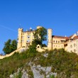 Hohenschwangau Castle — Stock Photo #7286219
