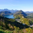 Castle Hohenschwangau and Lake Alp — Stok fotoğraf