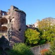 Heidelberg Castle in Germany — Stock Photo #7465918