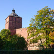 Heidelberg Castle in Germany — Stock Photo #7466006