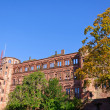 Heidelberg Castle in Germany — Stock Photo #7466016