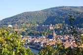гейдельберг, германия — Стоковое фото