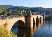 Castle and the Old Town in Heidelberg, Germany — Stock Photo