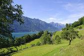 Lago di brienz e la ferrovia in svizzera — Foto Stock