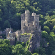Burg Rheinstein - Stock Photo