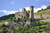 Ehrenfels Castle — Stock Photo