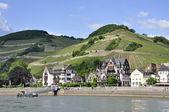 Village of Assmannshausen — Stock Photo