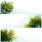 Trees over clear skies. — Stock Vector