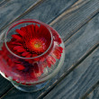 Red flower in glass — Zdjęcie stockowe #7505474