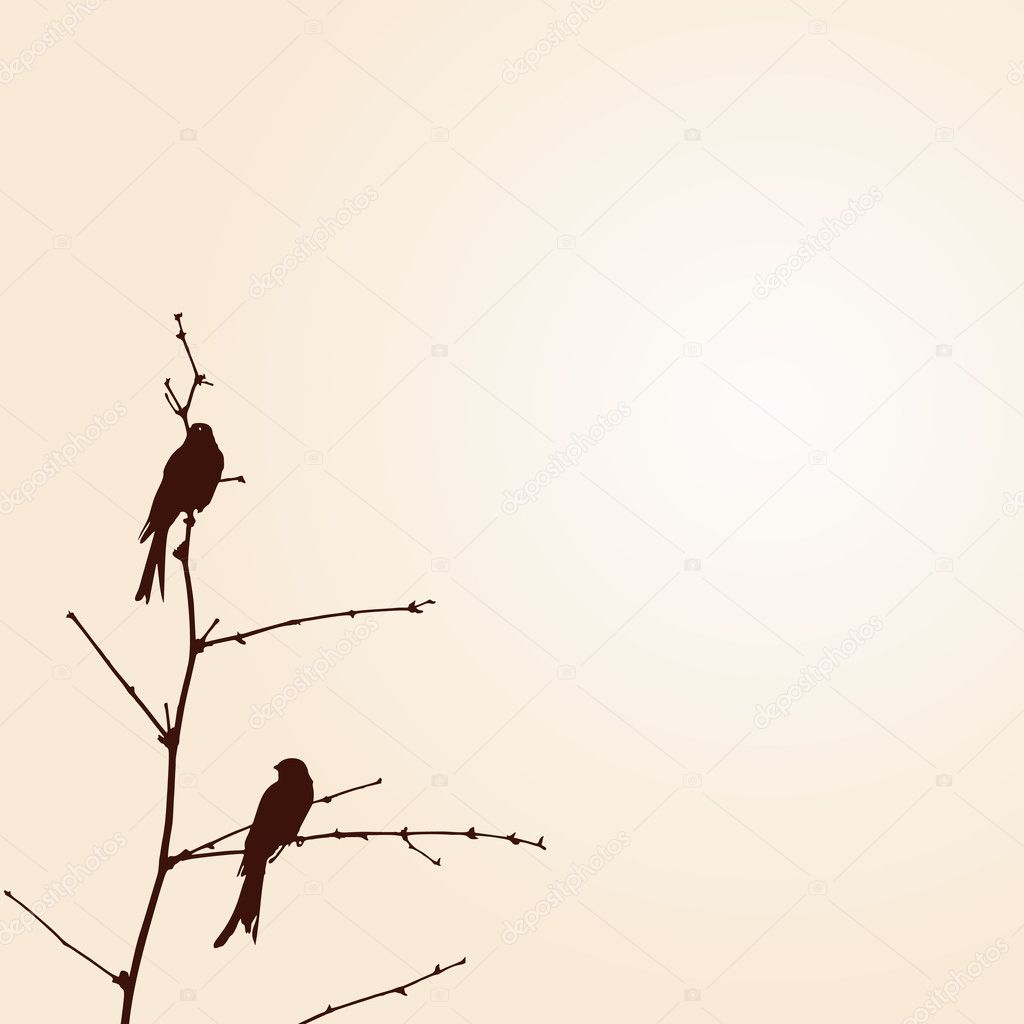 Two Bird on the tree branch — Image vectorielle #7539877
