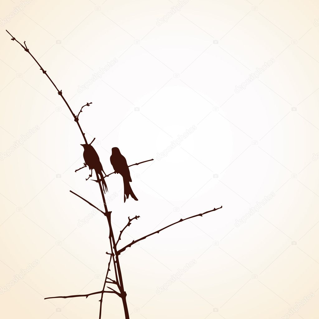 Two Bird on the tree branch — Vettoriali Stock  #7540253