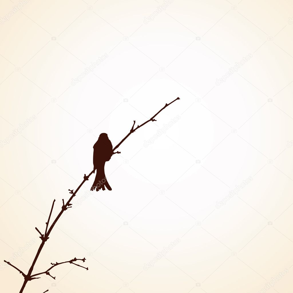 Bird on the tree branch — Stock Vector #7540262