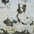 Stock Photo: Grungy wall