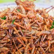 Fried grasshoppers — Stock Photo #7097597