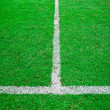 White line in green grass sport field — Stock Photo