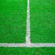 White line in green grass sport field — Foto Stock
