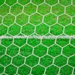 Sport net on green grass with white line — Stock Photo #7098834