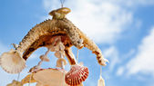 Sea shell decoration — Stock Photo