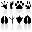 Footprint collection - Stock Vector