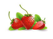 Strawberry Fruit — Stock Vector