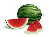 Vattenmelon — Stockvektor
