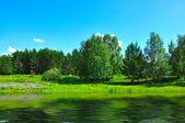 Solar landscape with lake — Stock Photo