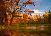 Picture - a quiet, silent autumn landscape with lake — Stock Photo