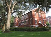 Historic Osceola County Courthouse, Florida (1) — Stock Photo