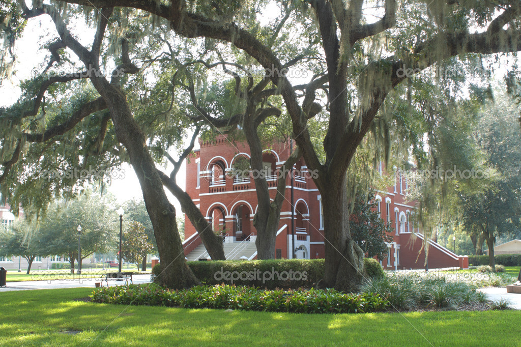 Built in 1890 and said to be haunted, the Osceola County Courthouse is the oldest courthouse in Florida still being used as such.  It was added to the National  — Stock Photo #6837998