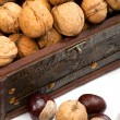 Chest with walnuts — 图库照片
