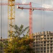 Development with crane — Stok fotoğraf