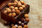 Chest with walnuts — Stock Photo