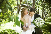 Wedding Photography — Stock Photo