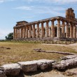Greek temple Paestum — Photo