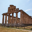 Greek temple Paestum — Stock Photo #6810715
